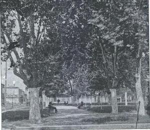 Congo Square  1890-1895