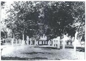 Suicide in Congo Square-1891 (Part 2)